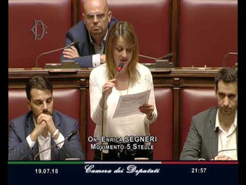 Enrica Segneri - Intervento di fine seduta 19/07/2018
