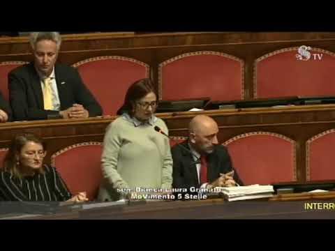 MATTEO SALVINI in diretta dal SENATO (08.11.2018)