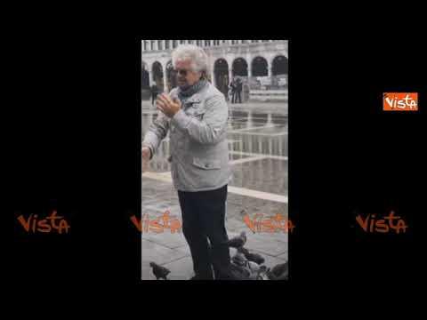 Beppe Grillo a Venezia assalito dai piccioni in piazza San Marco