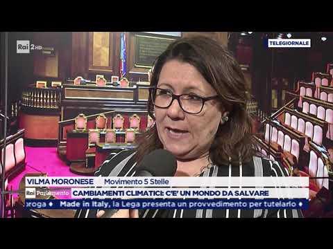 Vilma Moronese (M5S) a Rai Parlamento - Consumo di suolo