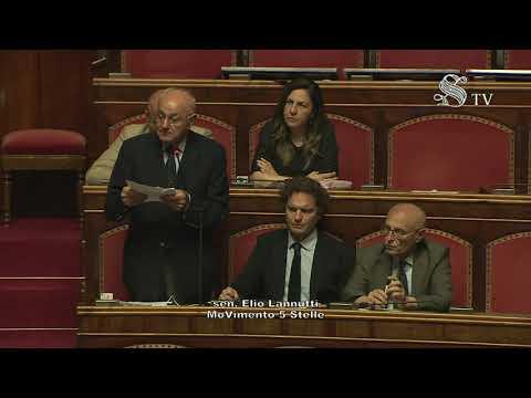 Elio Lannutti intervento Aula Senato 11/06/2019