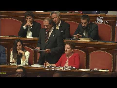 Gianmauro Dell'Olio (M5S) - Intervento in aula 10/09/2019