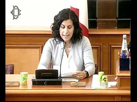 Audizione della sottosegretaria di Stato per lo sviluppo economico, Mirella Liuzzi