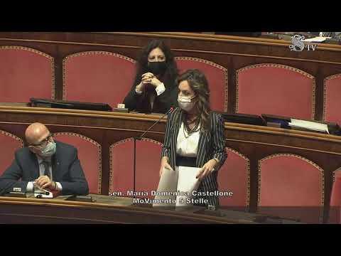 Maria Domenica Castellone - intervento aula Senato 13/01/2021