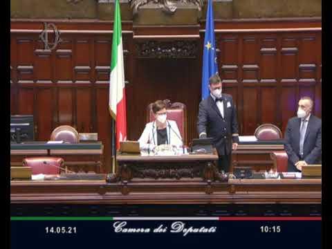 Alberto Zolezzi - Giovanni Vianello Interpellanze Urgenti 14/05/21